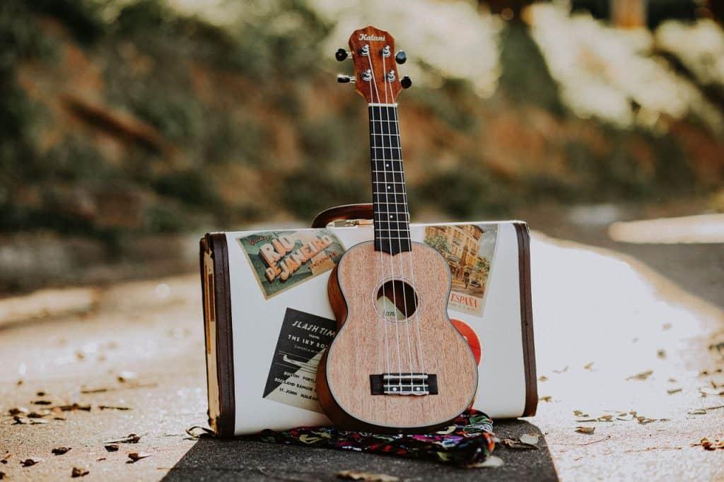 Header Pic Uke Strings