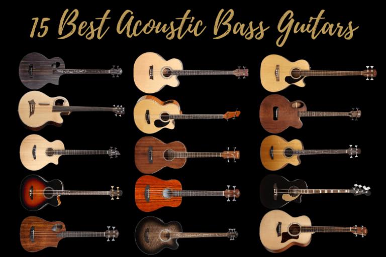 15 Best Acoustic Bass